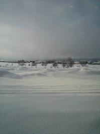 2012010308450000雪国.jpg
