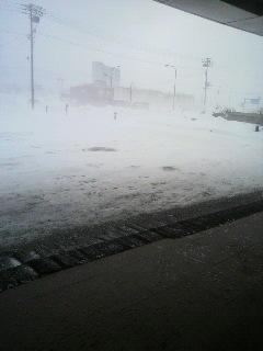 稚内の吹雪.jpg